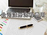 办理松江注册公司需要多少费用