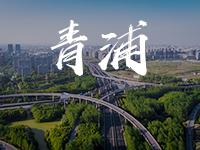 上海青浦公司注册