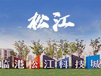 上海松江公司注册